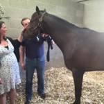 The Oscar Hughes Race Horse